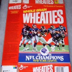 1991 New York Giants 1991 NFL Champions