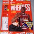 1991 Michael Jordan Fleer NBA Basketball Card Collector Sheet (1 of 8)