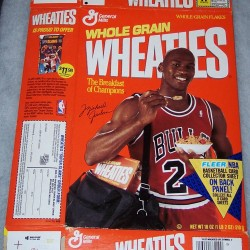 1991 Michael Jordan Fleer NBA Basketball Card Collector Sheet (2 of 8)