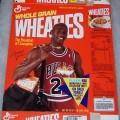 1991 Michael Jordan Fleer NBA Basketball Card Collector Sheet (3 of 8)