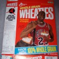 1991 Michael Jordan (Air Jordan Flight Club offer on side panel)