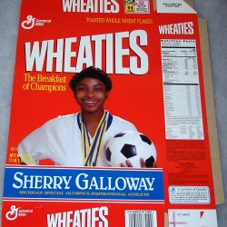 1995 Sherry Galloway Michigan Special Olympics Inspirational Athlete