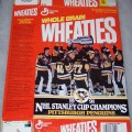 1991 Pittsburgh Penguins 1991 Stanley Cup Champions