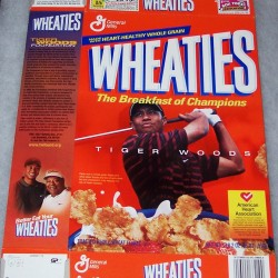 2002 Tiger Woods American Heart Association
