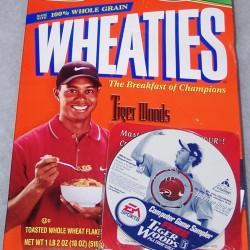 1999 Tiger Woods (EA sports CD on box)