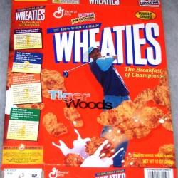 2001 Tiger Woods (swinging club)
