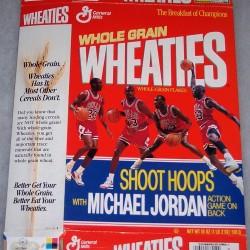 1990 Michael Jordan Shoot Hoops Action Game on Back